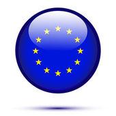 Euro flag button — Stock Vector