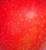 Buccia di mela rossa — Foto Stock