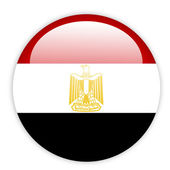 Egypt flag button — Stock vektor