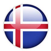 Iceland flag button — Stock Vector