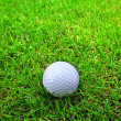 Golf ball on grass — Stock Photo #22494697