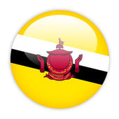 Brunei flag button — Stock Vector