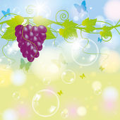 Grape with blur autumn background and bubbles — Stock Vector
