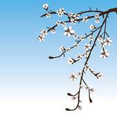 Fond belle au printemps — Vecteur