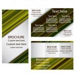 Vector Brochure Layout Design Template — Stock Vector #25537687