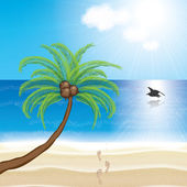 Tropical beach with palm trees and sun — Stock Vector