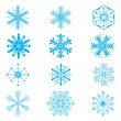 Set of snowflakes on white background — Stock Vector