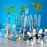 Laboratory equipment — Stock Photo #11096980