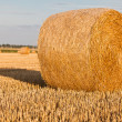 Straw rolls on stubble field — Stock Photo #12456476