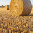 Straw rolls on stubble field — Stock Photo #12456798