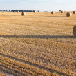 Straw rolls on stubble field — Stock Photo #12456817