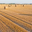 Straw rolls on stubble field — Stock Photo #12456908