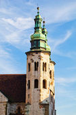 Church towers in town Krakow Poland — Stock fotografie