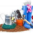 Garden tools — Stock Photo #12834173
