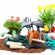 Garden tools — Stock Photo
