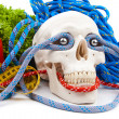 Fitness equipment and human scull - Stock Photo