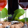 Wine accesories — Stock Photo