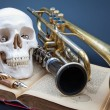Human scull and music instruments — 图库照片