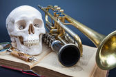 Human scull and music instruments — Stock Photo