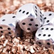 Metal dice - Photo
