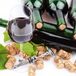 Wine bottles — Stock Photo #14094521