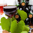 Wine bottles — Stock Photo #14094990