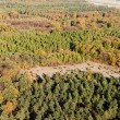 Aerial view of forest landscape in Poland — Stock Photo
