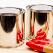 Cans of paint with paintbrushes isolated on white — Stock Photo #16860103