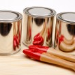 Cans of paint with paintbrushes isolated on white — Stock Photo #16927699