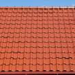 röda tak med blå himmel — Stockfoto #30288423