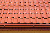 Red roof — Stock fotografie