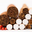 Tabaco industry — Stock Photo