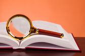Libro e lente di ingrandimento — Foto Stock