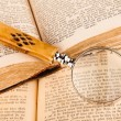 Magnifying glass and old books — Stock Photo #39795845