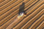 Combine on harvest field — Stockfoto