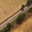 Aerial view of village road and harvest fields — Stock Photo #51165025