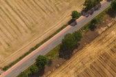 Aerial view of village road and harvest fields  — Стоковое фото
