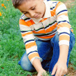 Little boy explores nature — Photo #14022226