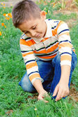 Little boy explores the nature — Foto Stock