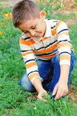 Niño explora la naturaleza — Foto de Stock