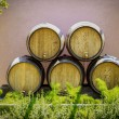 Barrels — Stock Photo #12395635