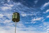 Casas del pájaro — Foto de Stock