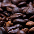 Freshly Roasted Coffee Beans in Narrow Focus - Stock Photo