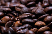 Freshly Roasted Coffee Beans in Narrow Focus — Stock Photo
