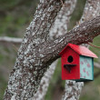 Nest box — Stock Photo