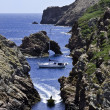 Berlengas — Stock Photo
