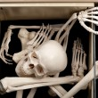 Skeleton in drawer — Stock Photo