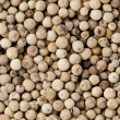 White Peppercorns (Piper nigrum) — Stock Photo