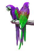 Macaw isolate — Foto de Stock