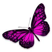 Roze vlinder — Stockfoto